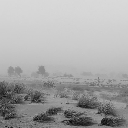 sand-storm081sq