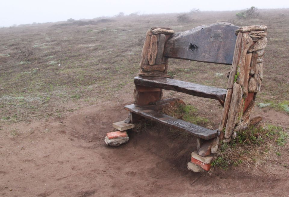 Fabulous place to sit and watch the sea. A great spot to rest during the long Fiscalini Ranch walk.