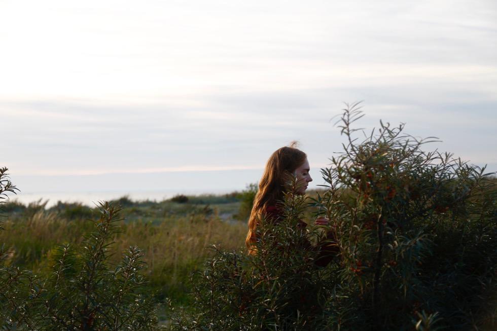 Tip til at finde havtorn (Sjælland, Kongelunden) - 1