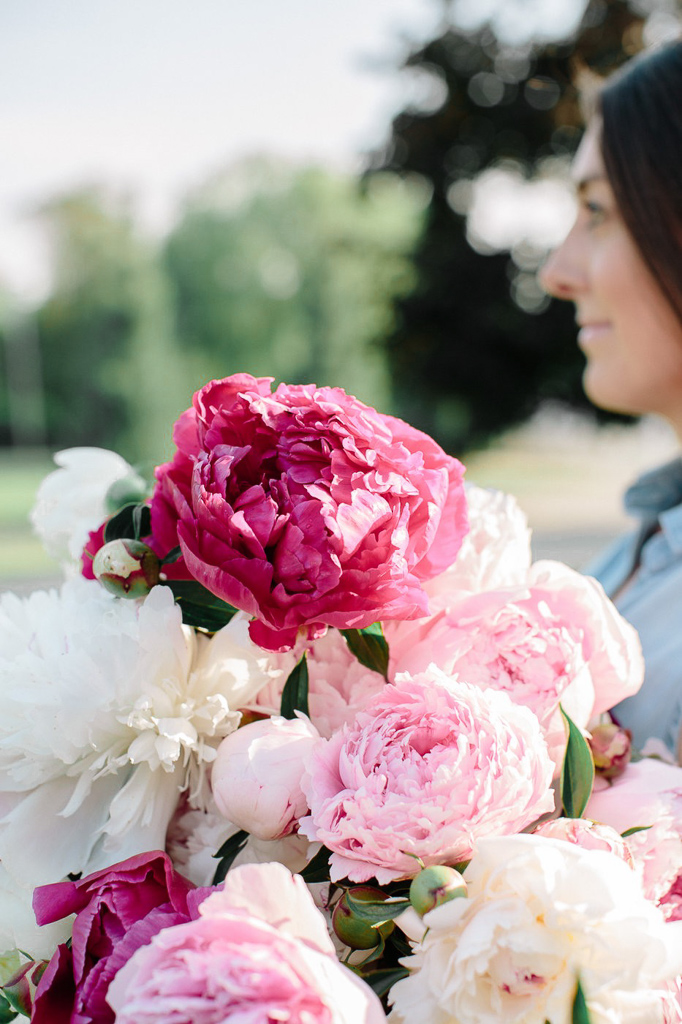 Looking to grow and harvest Peonies? Here is your complete guide to growing and harvesting Peonies so that you can have a beautiful garden year after year.