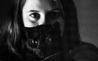 Clair Obscur, travail de portrait avec un chat