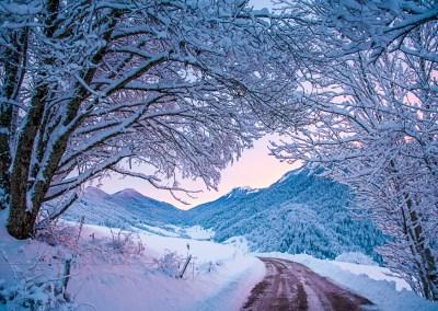 l'hiver, un cheminement intérieur. Photo Par Christine Haas