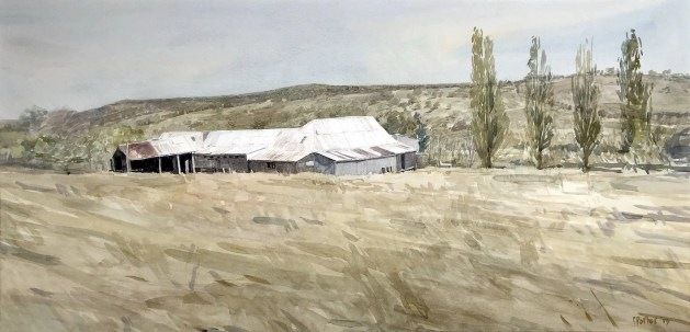 A watercolour painting by Christine Porter of a shearing shed and four tall poplar trees as seen from above. All around is brownish green paddocks with some hills on the other side of the valley