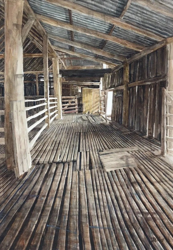 """A photo fo a watercolour painting by Christine Porter of the interior of an old  shearing shed.Looking u one of the side pens towards a wooden door and gate. Title """"Shearing shed interior"""" 2019 watercolour 56x38cm sold"""