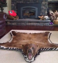 Bear Skin Rug And Fireplace