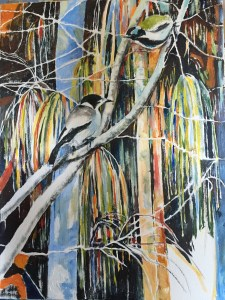 The Tale of the Blue Faced Honeyeater and the Butcherbird #7