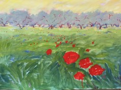 My sketch of poppies and olive trees