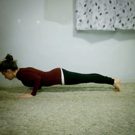 Day 2: Chaturanga
