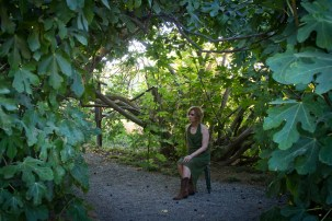 Singer songwriter Christine Rosander at the Fig Orchard in Park Winters