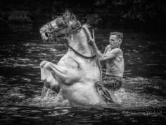 Gypsy Rider