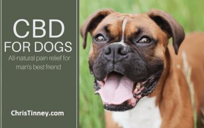 Hempworx CBD Oil for Pets