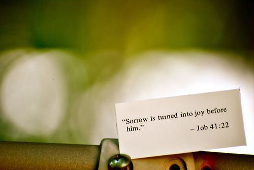 scripture brings joy to