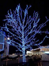 Blue Christmas Decorations - Christmas Celebration - All ...