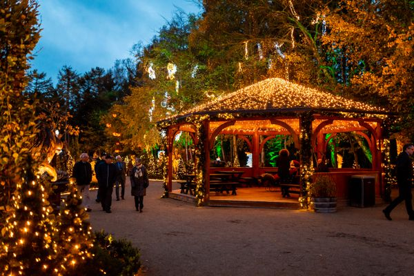 Visit the Danish Christmas Markets