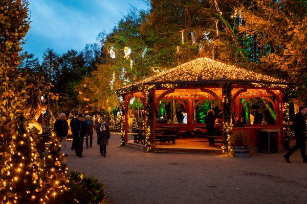 Visit the Danish Christmas Markets