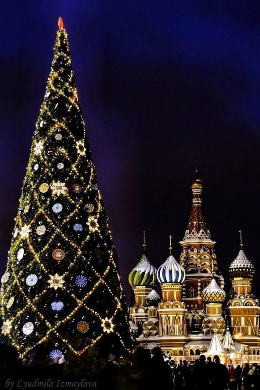 Christmas Tree on the Red Square Moscow. against the background of cathedral of Basil Blessed. night shot.