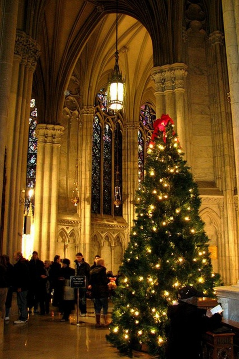 St. Patrick's Cathedral Christmas Tree, NYC