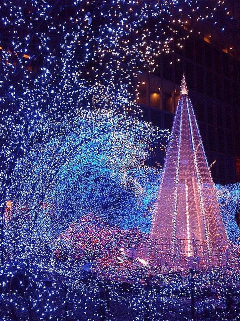 Illumination in Tokyo 2008 Christmas by D.J. Milky
