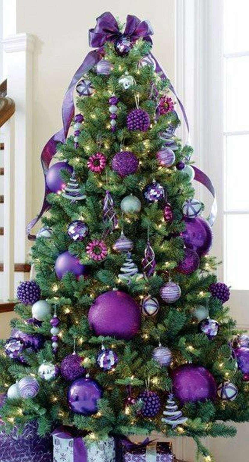 Purple Christmas Trees – Christmas Photos