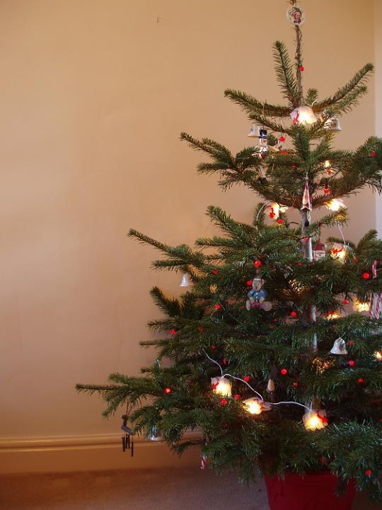 Keyword Photo Of Traditional Christmas Tree Free Christmas Images