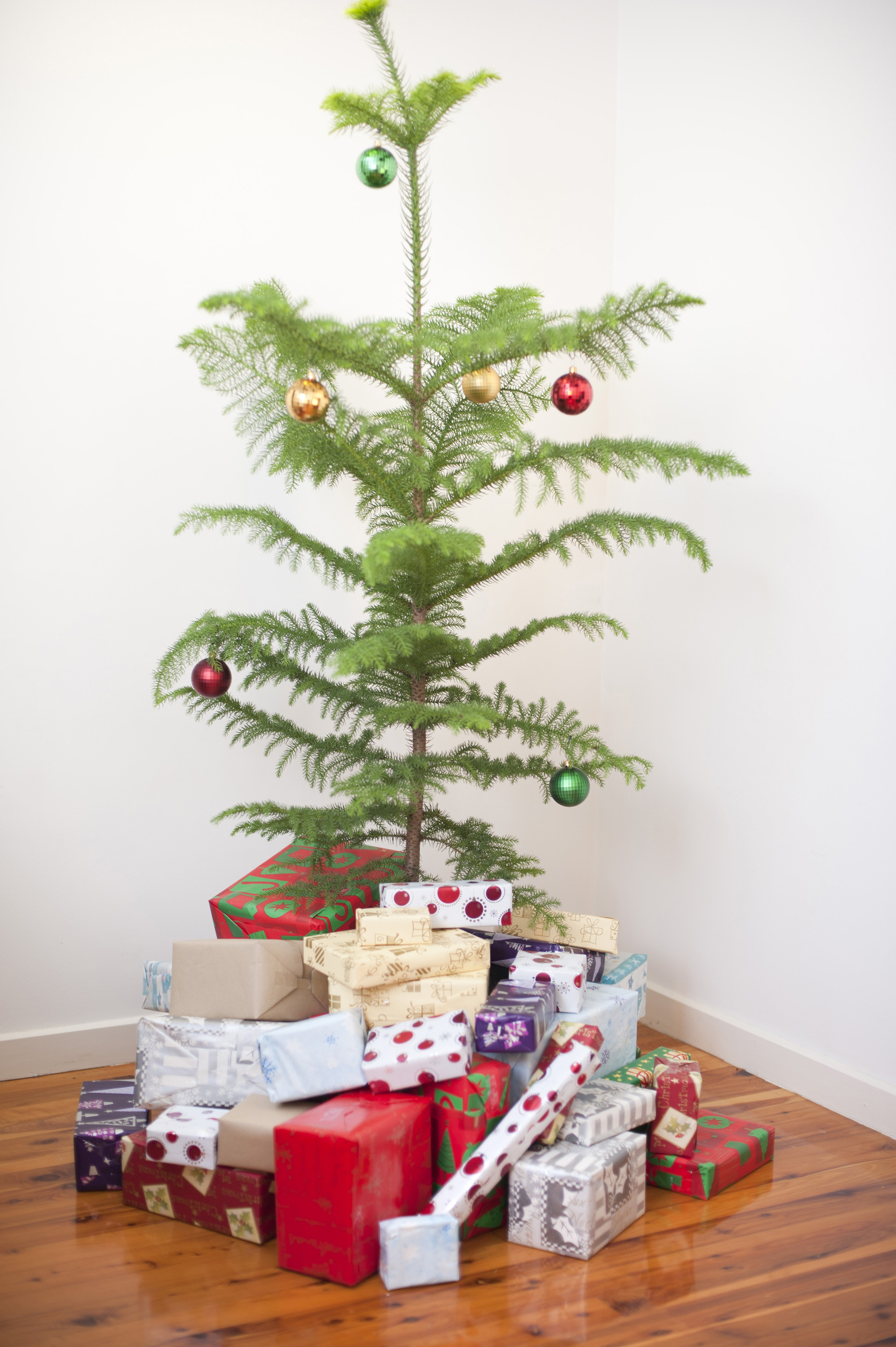 Photo Of Modern Simple Natural Christmas Tree Free
