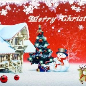 Christmas Door Mats