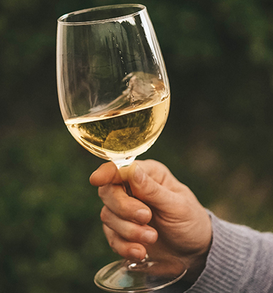White wine held by hand