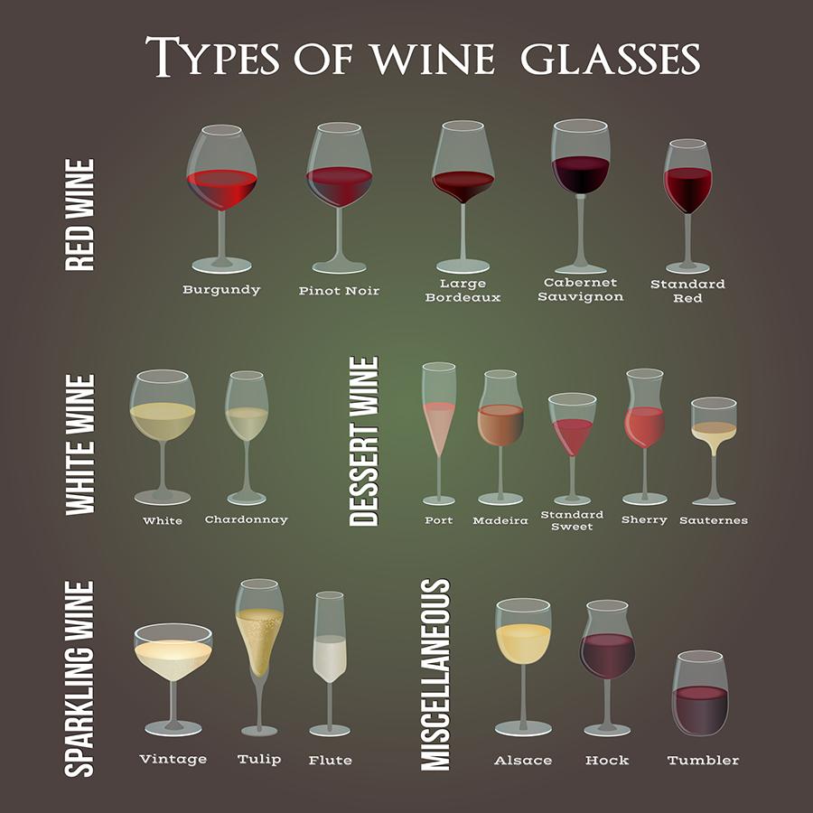 Wine glass types infographic