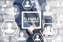 flexible Development