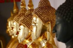 la vérité sur la méditation