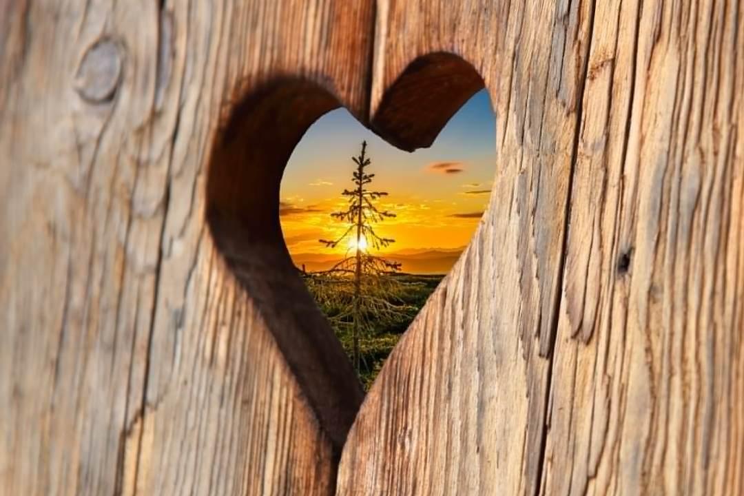 amour humanité - Changer le Monde : Mettre enfin l'Amour aux Commandes