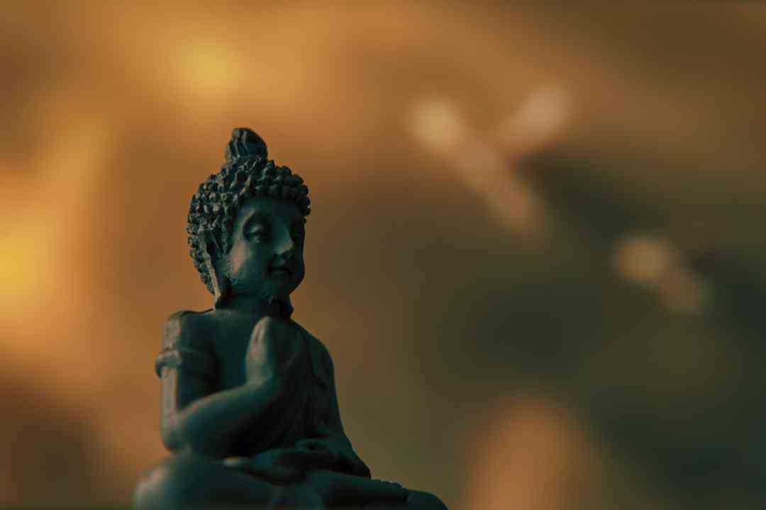 Méditation Vipassanā : une définition