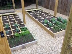 Square foot gardening technique