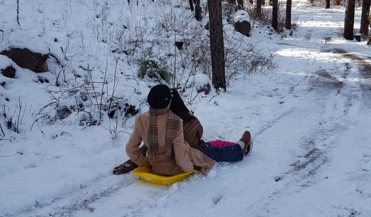 Sledding in Christopher Creek