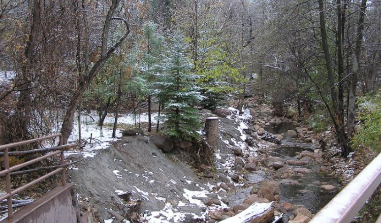 First Snow in Christopher Creek