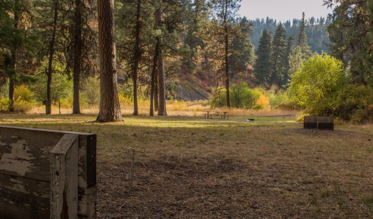 Horseshoes in Christopher Creek