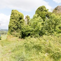 Carrigogunnell Castle Ruins