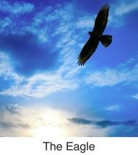 Icon-The Eagle
