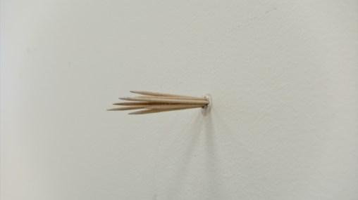 decent_detail_toothpicks