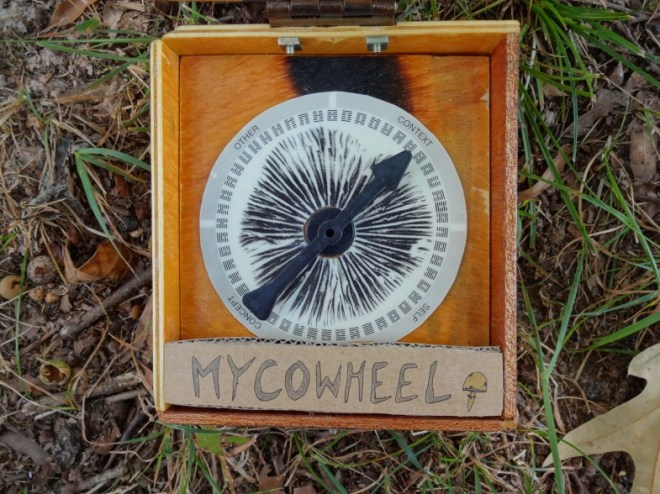 Mycowheel Close 1