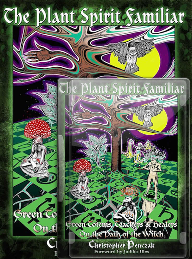 The Plant Spirit Familiar Book and CD