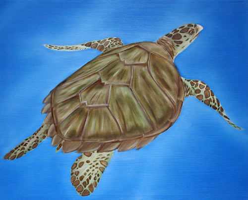 Hawksbill, sea, turtle, ocean, painting, art, sea turtle
