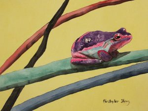 Colourful frog in a colourful world - Watercolour on paper - 46cm x 36cm