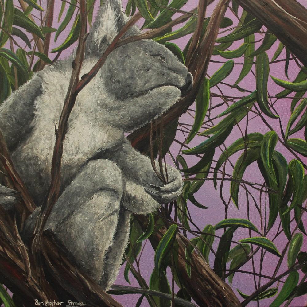 Koala pondering next moves