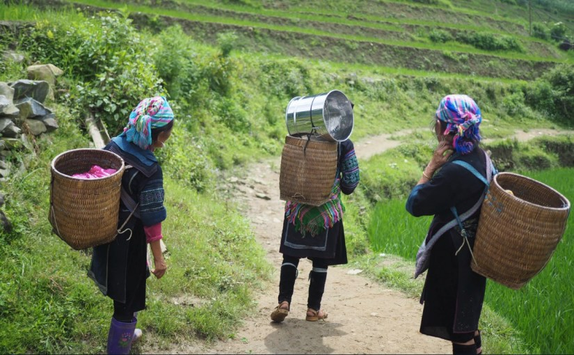 Three women carry baskets of goods on their backs on a dirt pathway surrounded by bright green grass