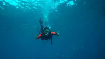 Scuba diving in Looe Key Reef