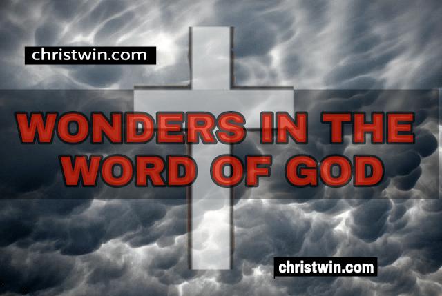 wonders of the word