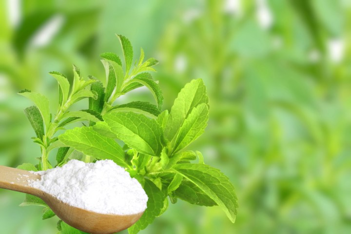 Is stevia healthy? Here's everything you need to know about what stevia is, how natural it is, how it's made, and whether or not you should use it! From registered dietitian Christy Brissette of 80TwentyNutrition.com
