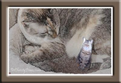 Cowcat UP! - Trail Ride Adventure of a Cat Scout - Caturday Art piece