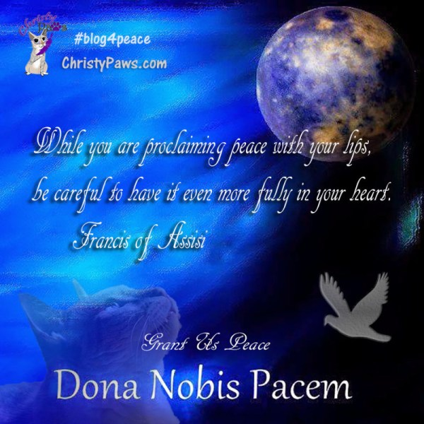 #blog4peace globe and quote